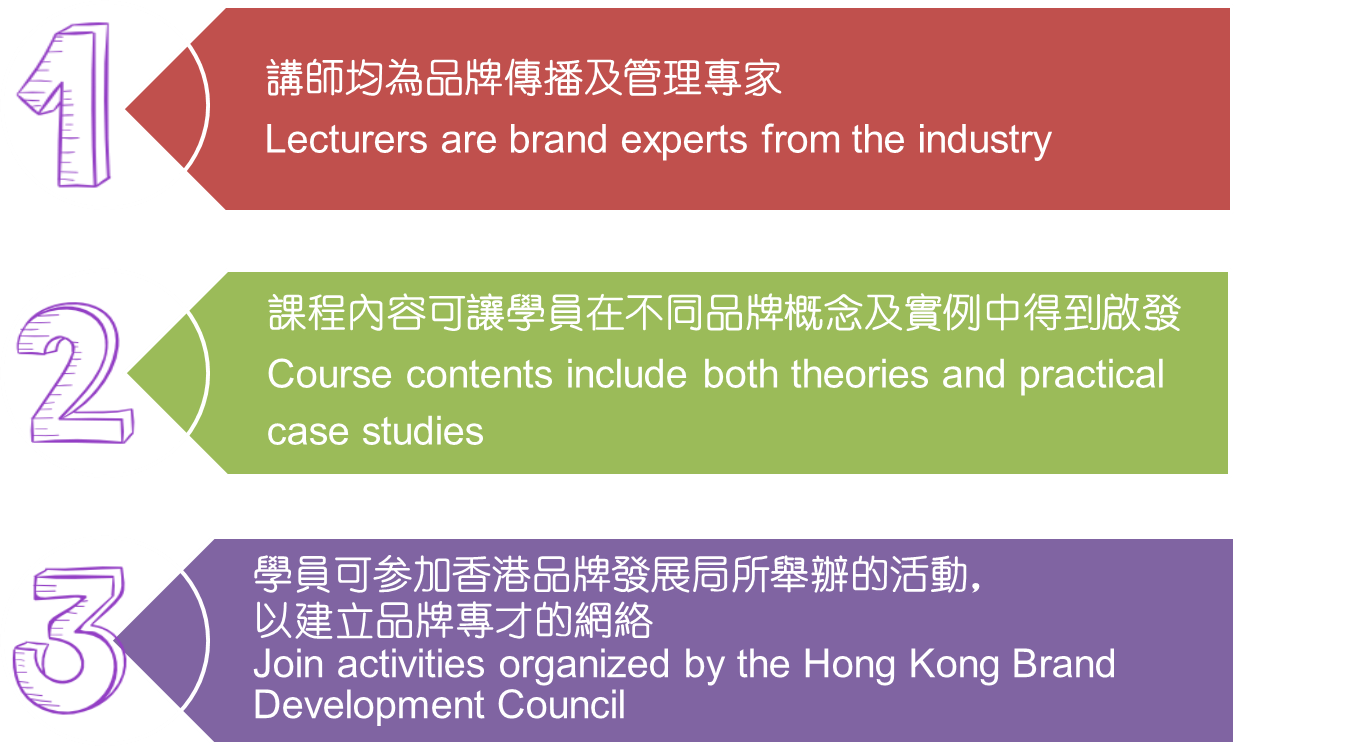 brand management programme highlights