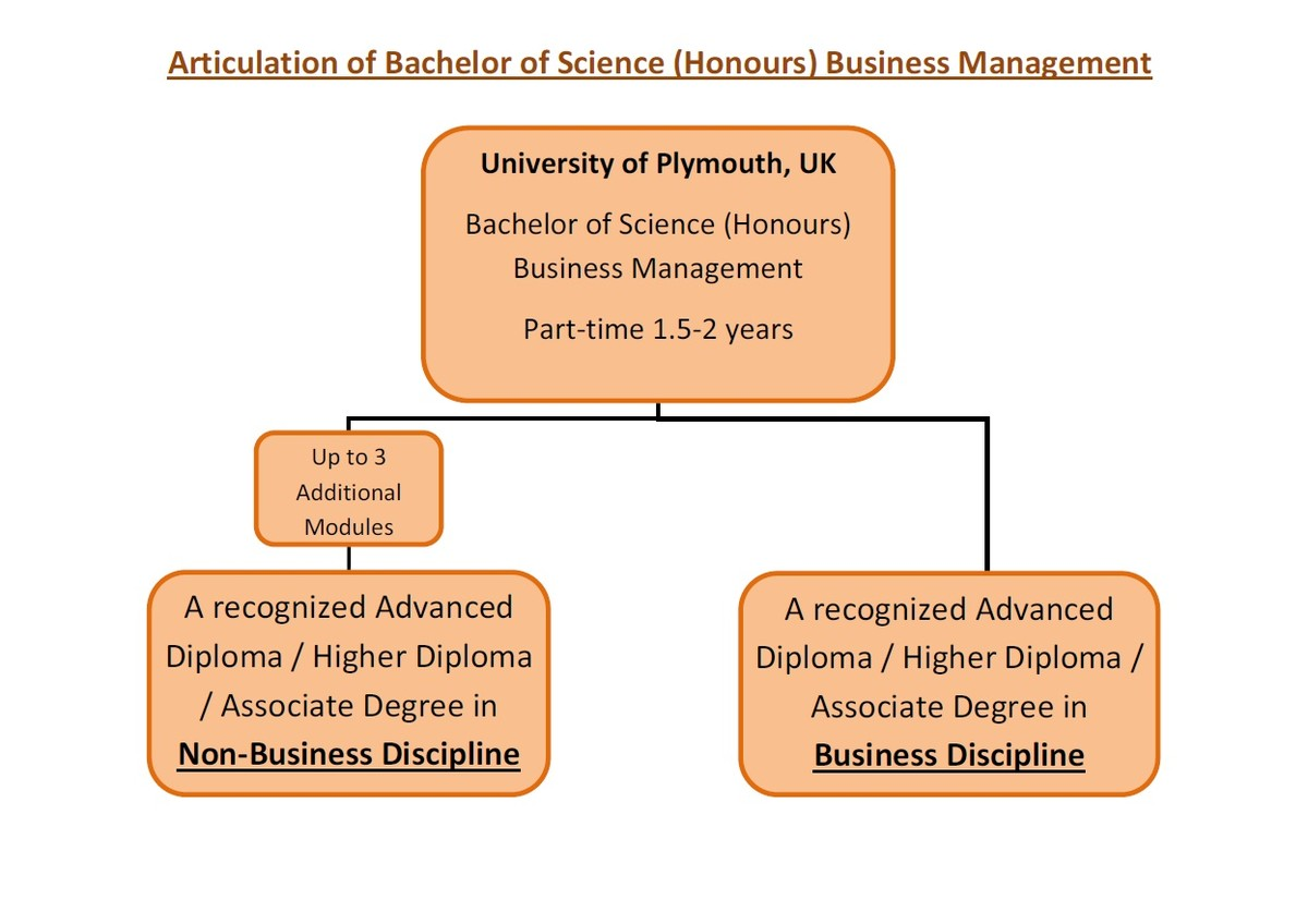 bachelor of science honours business management hku space bachelor of science honours business management hku space management human capital leadership courses