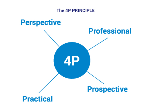 The 4P principle of SEA - Perspective, Professional, Practical, Prospective